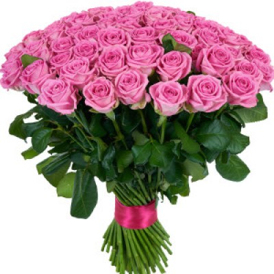 101-pink-roses-2-300x3004