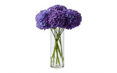 Hydrangea_Cat_Vase_Optimized_580x