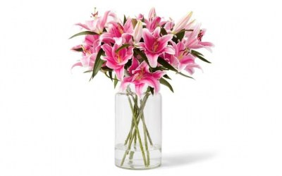 Lilies_Cat_Vase_Optimized_580x
